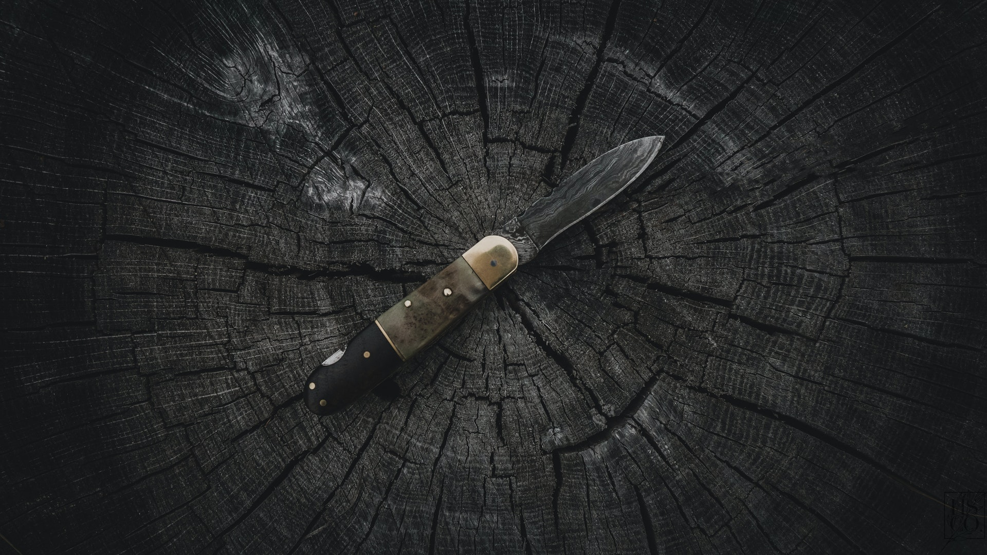 Best Survival Knife Sheaths you must see